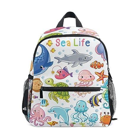 cddb4ad92742 Amazon.com   U LIFE Ocean Sea World Animal Aquatic Fish Kids ...