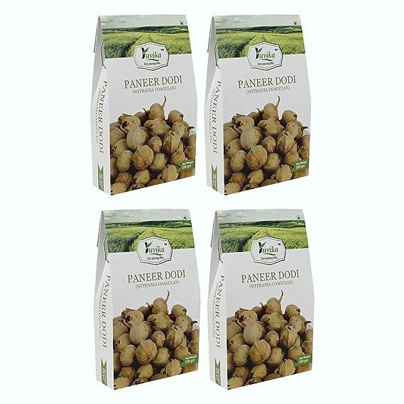 YUVIKA Paneer Dodi - Paneer Ke Phool - Withania Coagulan (250 Grams) (Pack of 4)