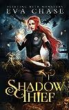 Shadow Thief (1)