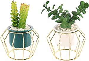 2 Pack Medium Artificial Succulent Green Plants Fake Decorations in Modern Ceramic Pots, Inside with Lifelike Stone Pebbles, with Gold Diamond-Shaped Stand, Perfect for Decorating Home Kitchen