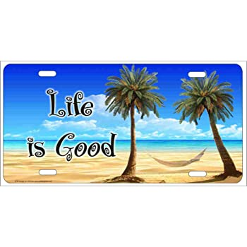 Amazon Com Airbrushed License Plates Personalized