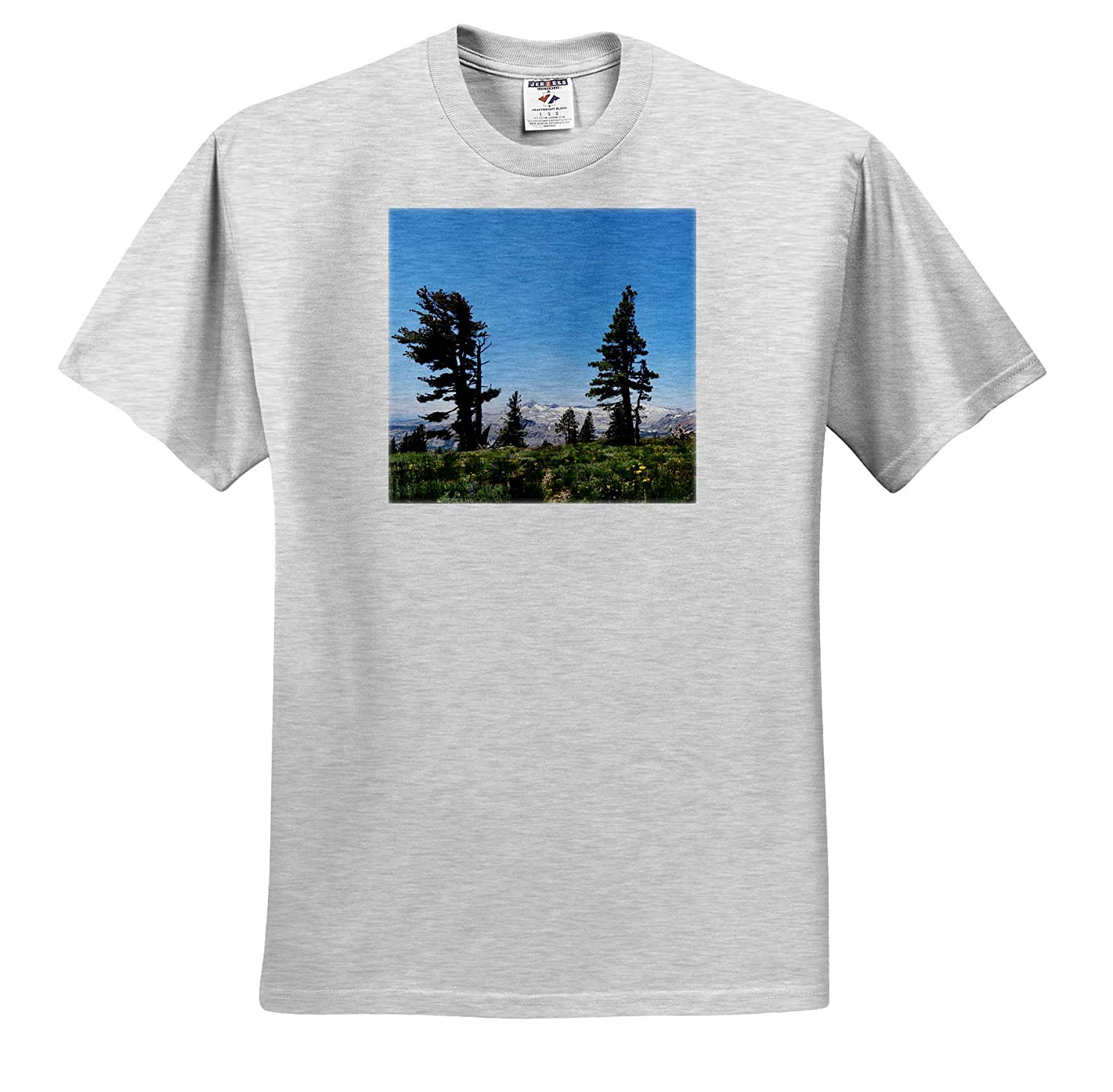 Field California 3dRose Tory Anne Collections Photography Summer Flower Mountain View T-Shirts