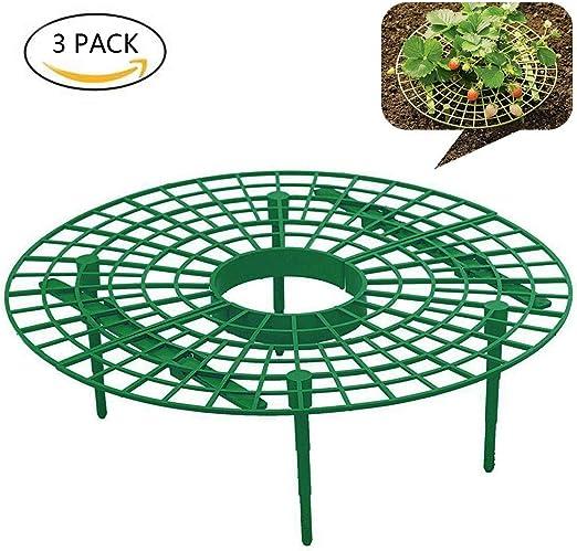 JK Soporte para plantas de fresa, marco de protección para el ...