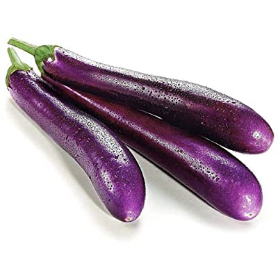150Pcs Long Purple Eggplant Seeds Vegetable Seeds for Planting Outside Door Home Garden : Garden & Outdoor