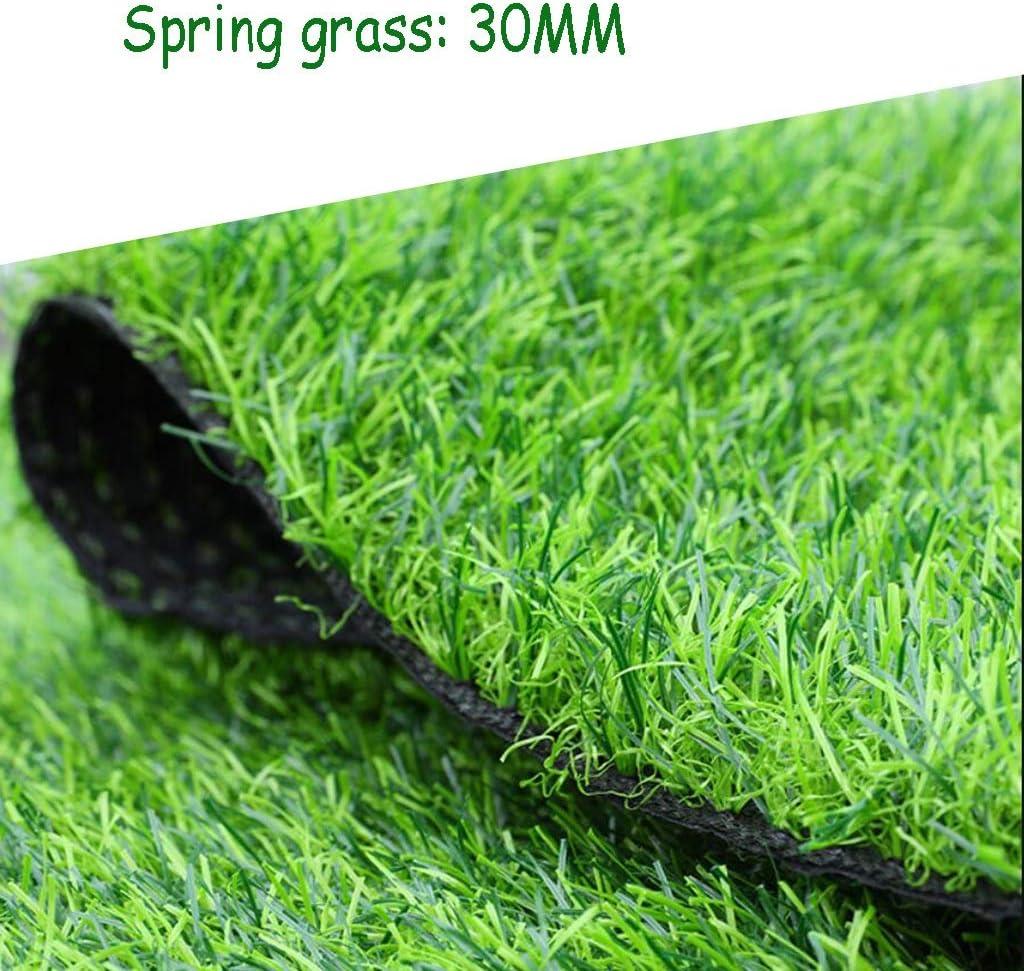 XEWNEG 30MM暗号化人工芝、緑の偽の芝生の敷物、防水、難燃性、滑り止め、屋外/庭/壁の装飾に適しています (Size : 2x4M)