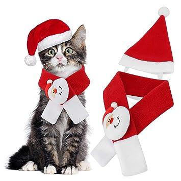 Amazon.com: Qkurt - Disfraz de Papá Noel para gatos, perros ...