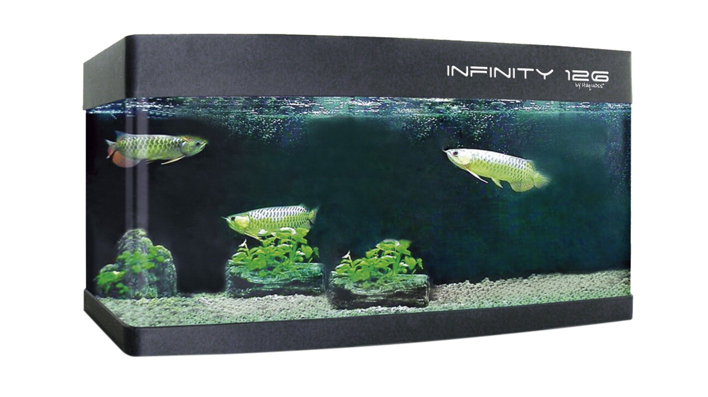 Haquoss Infinity 126 - Acquario Serie Gold Line (126x55x80h h cm - 550 litri) Aquarialand