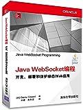 Java WebSocket编程:开发、部署和保护动态Web应用