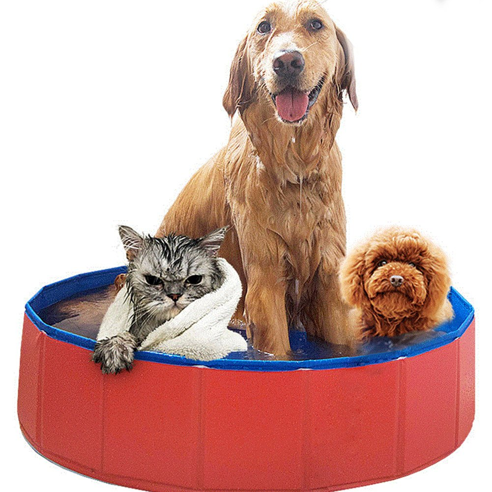 Mcgrady1xm Foldable Dog Pet Pool Bathing Tub, Pet Swimming Pool Collapsible Dog Pet Bath Pool, Large and Medium Sized Pet Dog, Cat Swimming Pool, Indoor Or Outdoor Kiddie Pool Hard Plastic