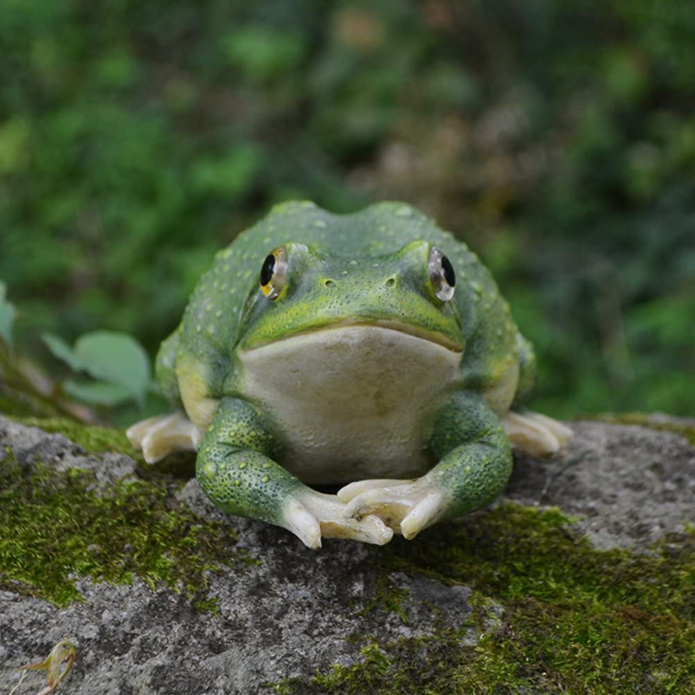 Lazy Puppy Garten /& Outdoor Creative Frosch Figuren Steingarten Teich Ornaments