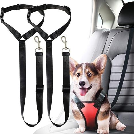 Musonic 2 Paquetes de cinturón de Seguridad para Perro, Gato ...
