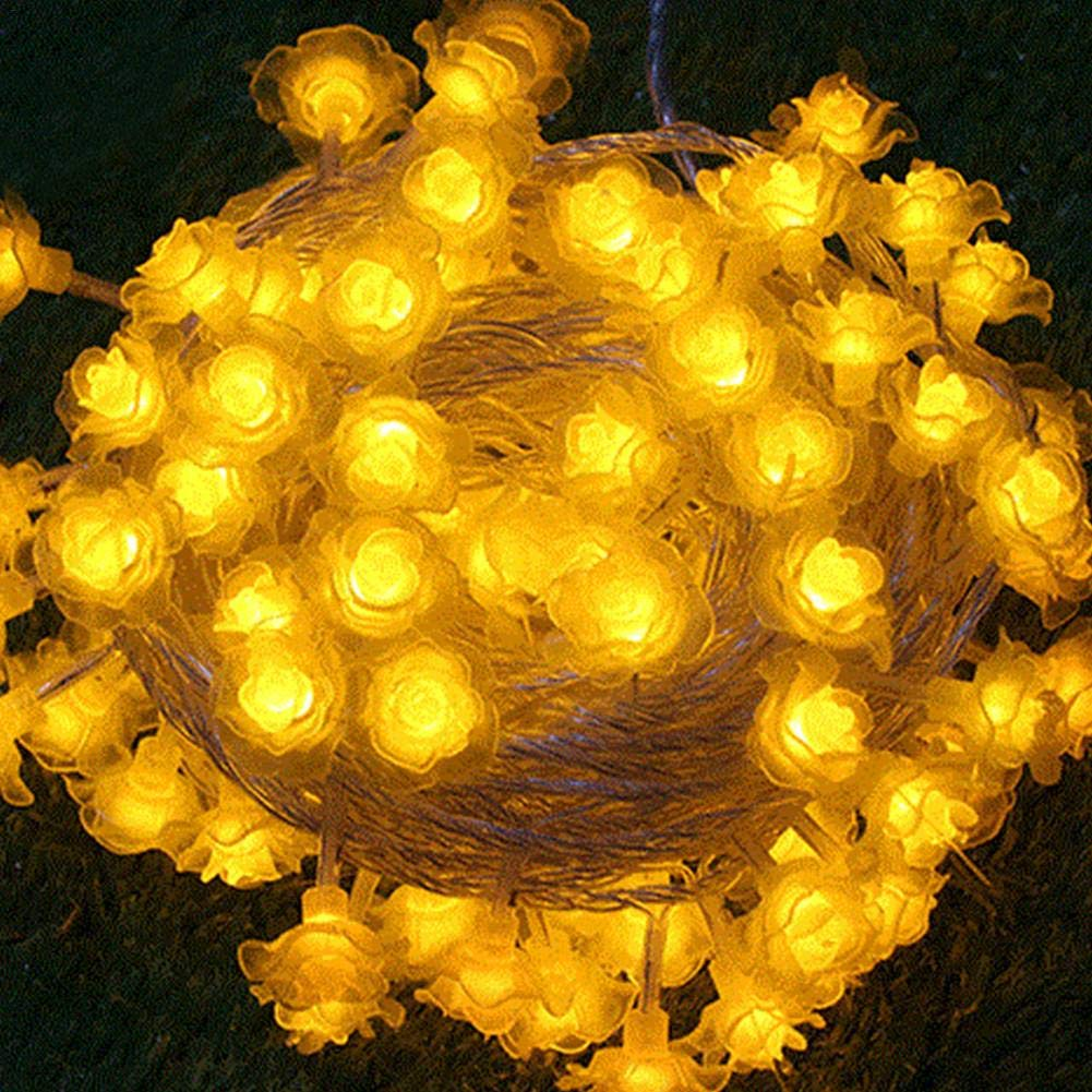 Chaîne de lumières colorées de 10m 100 LED lumières de chaîne de puissance de prise de l'UE pour la chambre à coucher, la décoration extérieure et de vacances forestwood