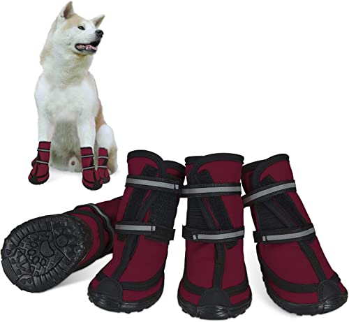 Dociote-Hundeschuhe-pfotenschutz