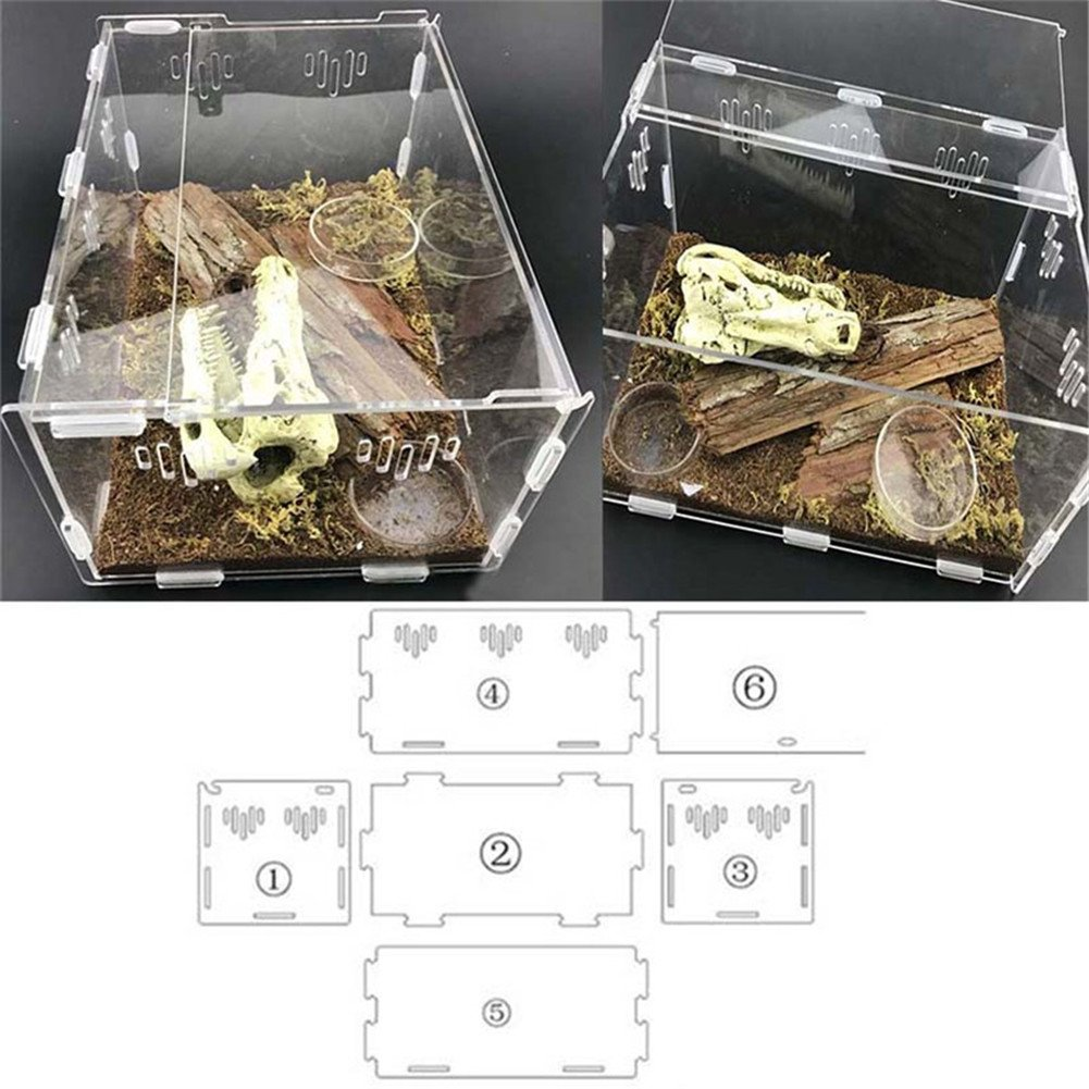 Sunsline New Reptile Spider Gecko Lizard Scorpion Centipede Horned Frog Snail Turtle Terrapin Acrylic Tank Feeding Box