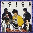 VOICE PRINT