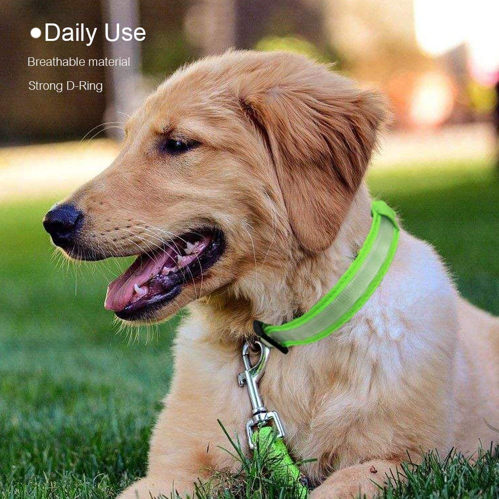 LED Safety Collar with USB Rechargeable Super Bright Dog Flashing Collar with 100/% Waterproof 4 Colors with 3 Sizes for Small Medium Large Dogs. MASBRILL Light Up Dog Collar