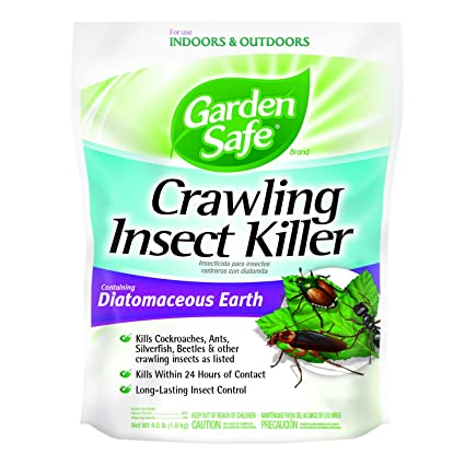 Is diatomaceous earth safe for kittens