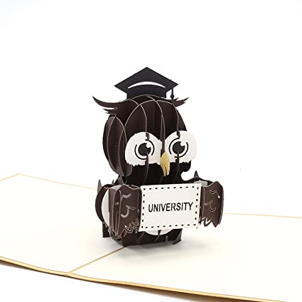 Liif Graduation Owl Pop Up Card 3D Greeting For Graduate
