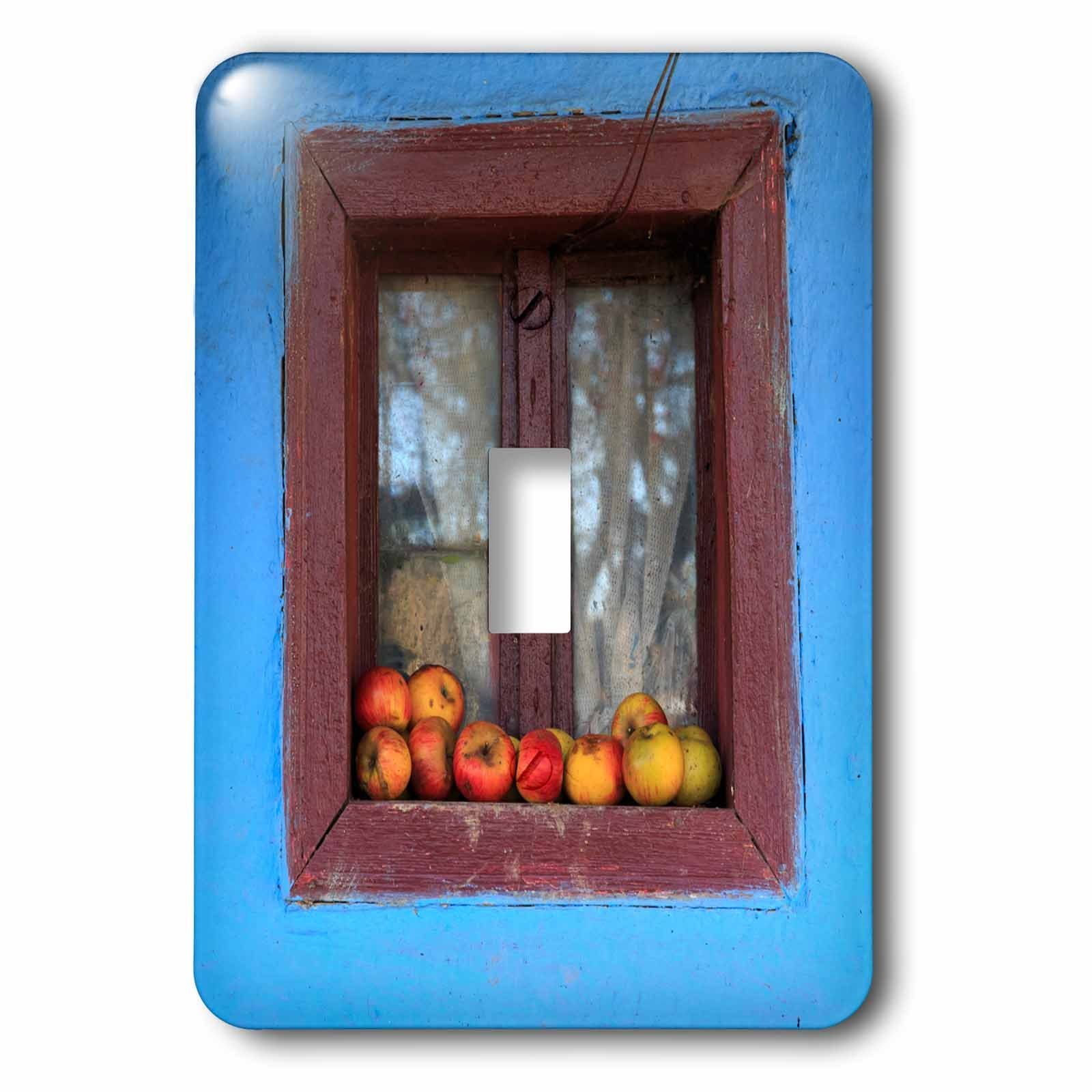 3dRose Danita Delimont - Food - Romania, Dobricu Lapusului. Typical farm house, Window with apples. - Light Switch Covers - single toggle switch (lsp_277876_1)