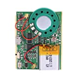 VBESTLIFE USB Music Sound Voice Recording Module Chip 1W with Rechargeable Lithium Battery(Light Sensor)