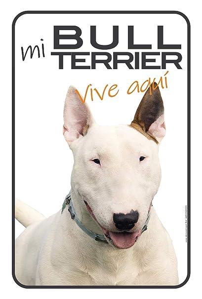 Regalo original - Cartel Resistente PVC - MI (perro ...