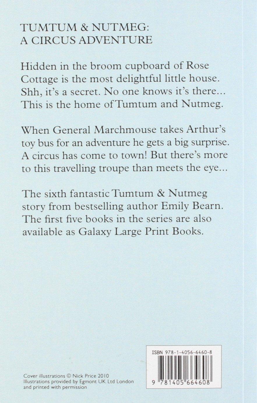 A Circus Adventure (Tumtum and Nutmeg): Emily Bearn: 9781405664608:  Amazon.com: Books
