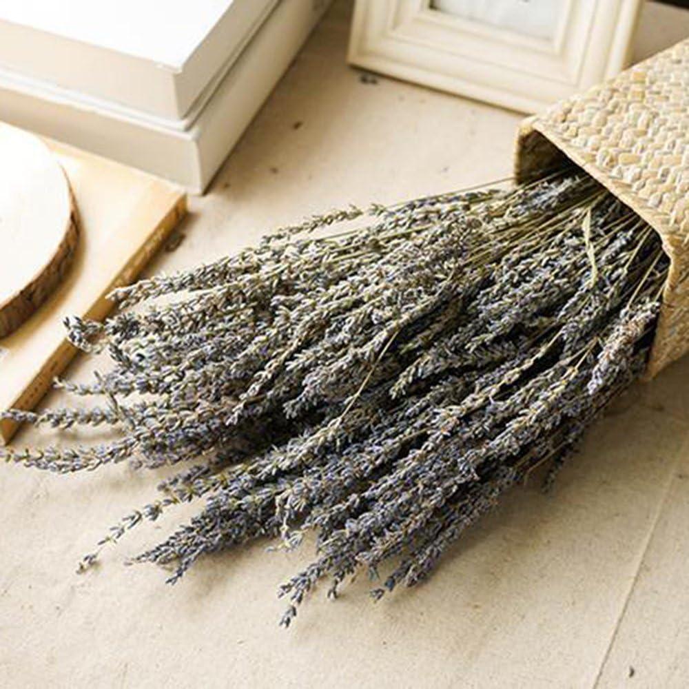 80 steli di Lavanda Fresca e secca casa Purple lulalula Matrimonio 1 Confezione Bouquet di Fiori essiccati per Fai da Te Lavanda