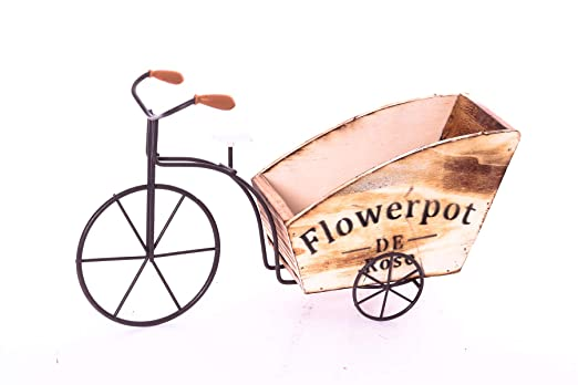 Macetas para bicicleta vintage con flores, maceta de flores ...