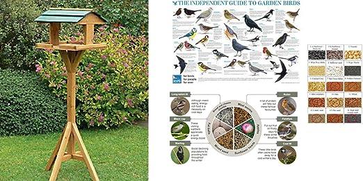 4 opinioni per Mangiatoia per uccelli a colonna, da giardino
