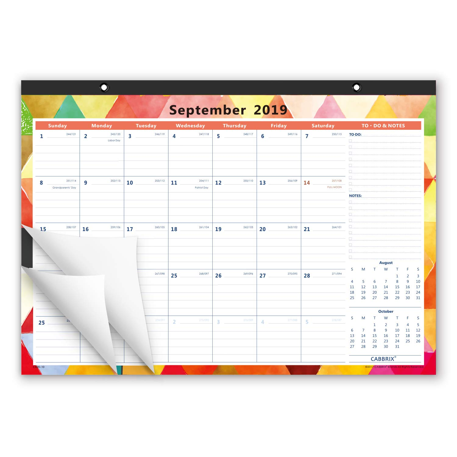 Cabbrix 2019-2020 Academic Year Monthly Desk Calendar, 17 x 12 Inches, Wirebound, Fashionable Designer for Office and Home