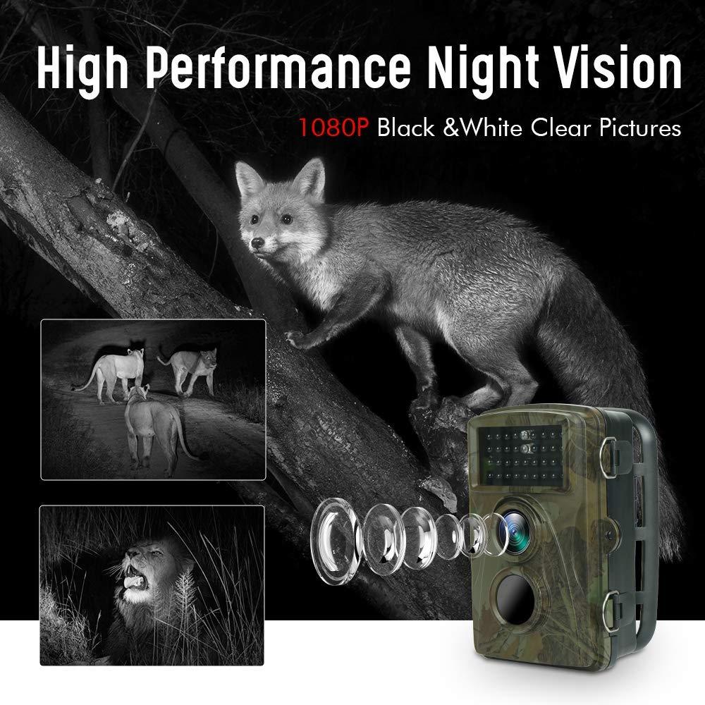 TEC.BEAN C/ámara de Caza Vigilancia de Jardines 12MP 1080p FHD C/ámara con Visi/ón Nocturna Infrarroja Activada por Movimiento de hasta 65 pies//20m 2.4 LCD Pantalla para Monitoreo de Vida Silvestre