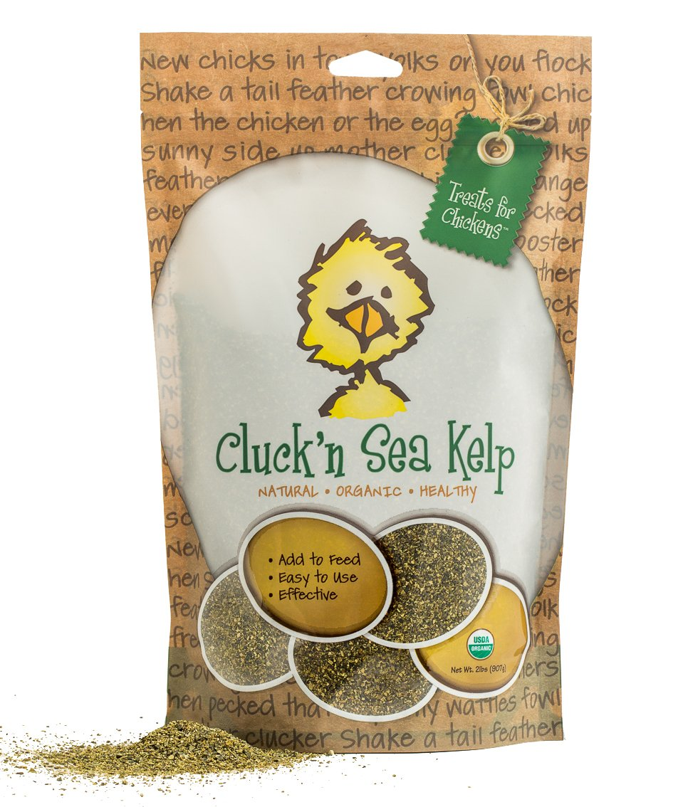 Treats For Chickens Certified Organic Cluck'N Sea Kelp, 2-Pound, Vitamin Supplement by Treats For Chickens