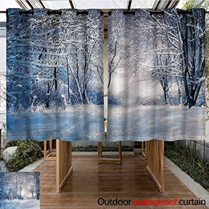 Amazon.com: Cortina de invierno personalizable para ...