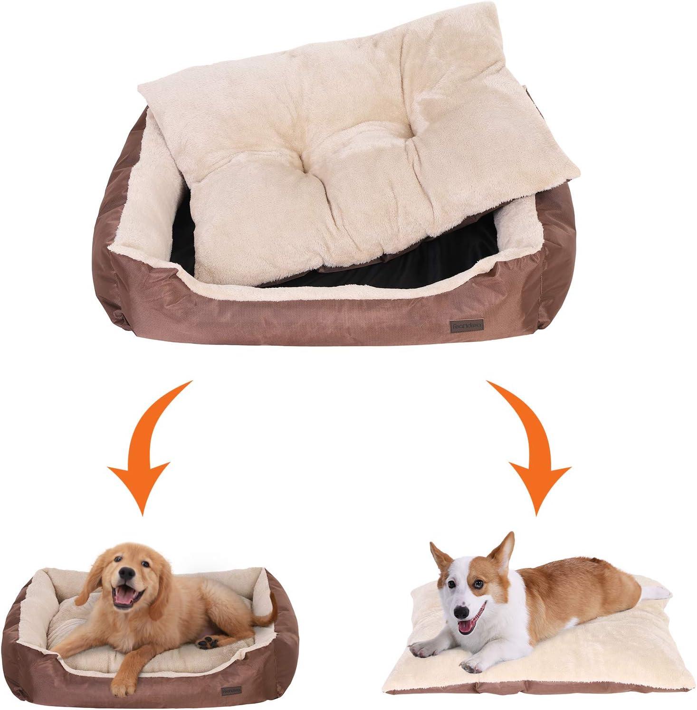 sofa y colchon para perros