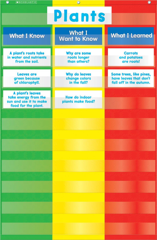 Amazon scholastic teachers friend 3 column chart pocket chart amazon scholastic teachers friend 3 column chart pocket chart multiple colors tf5114 classroom pocket charts office products nvjuhfo Choice Image