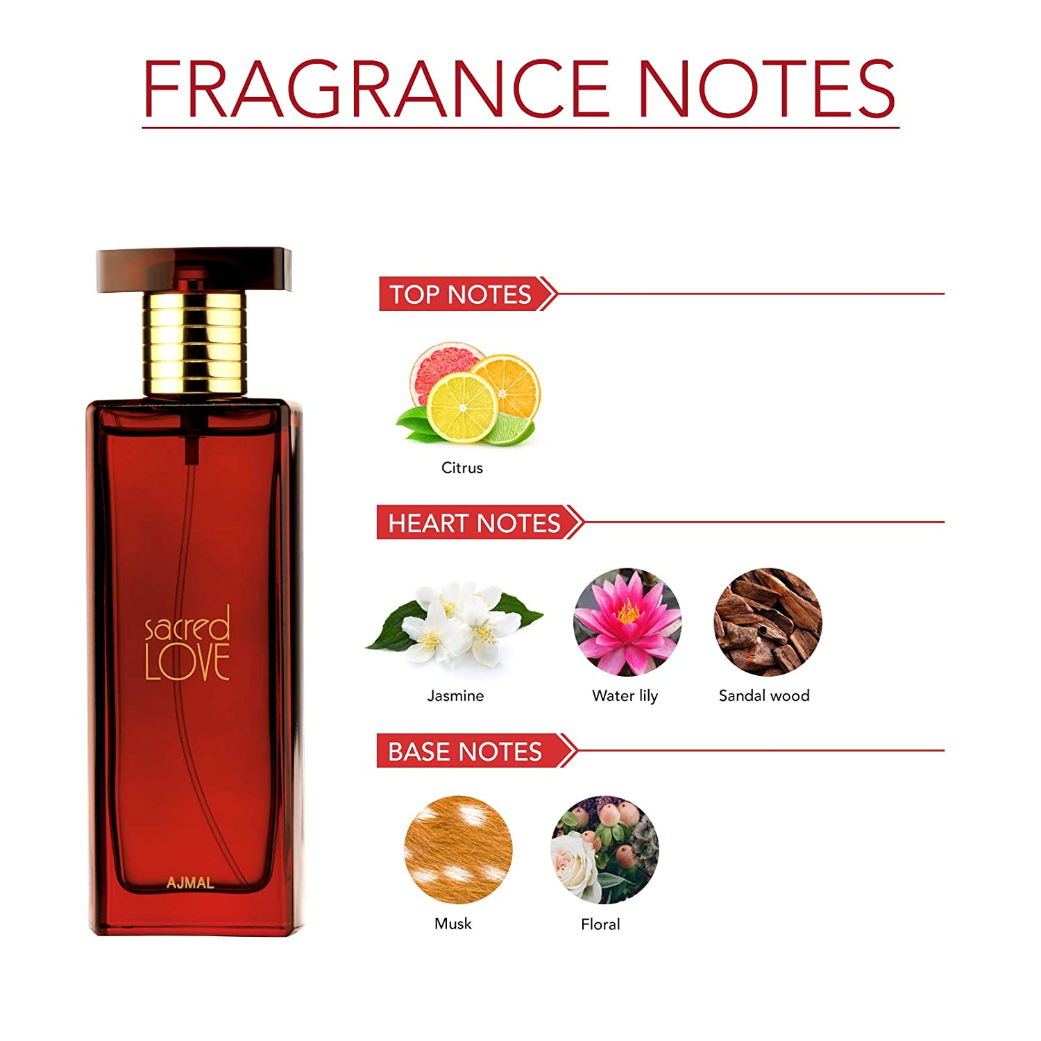 Ajmal Sacred Love EDP 50ml floral perfume for Women- Best Perfume under 1000
