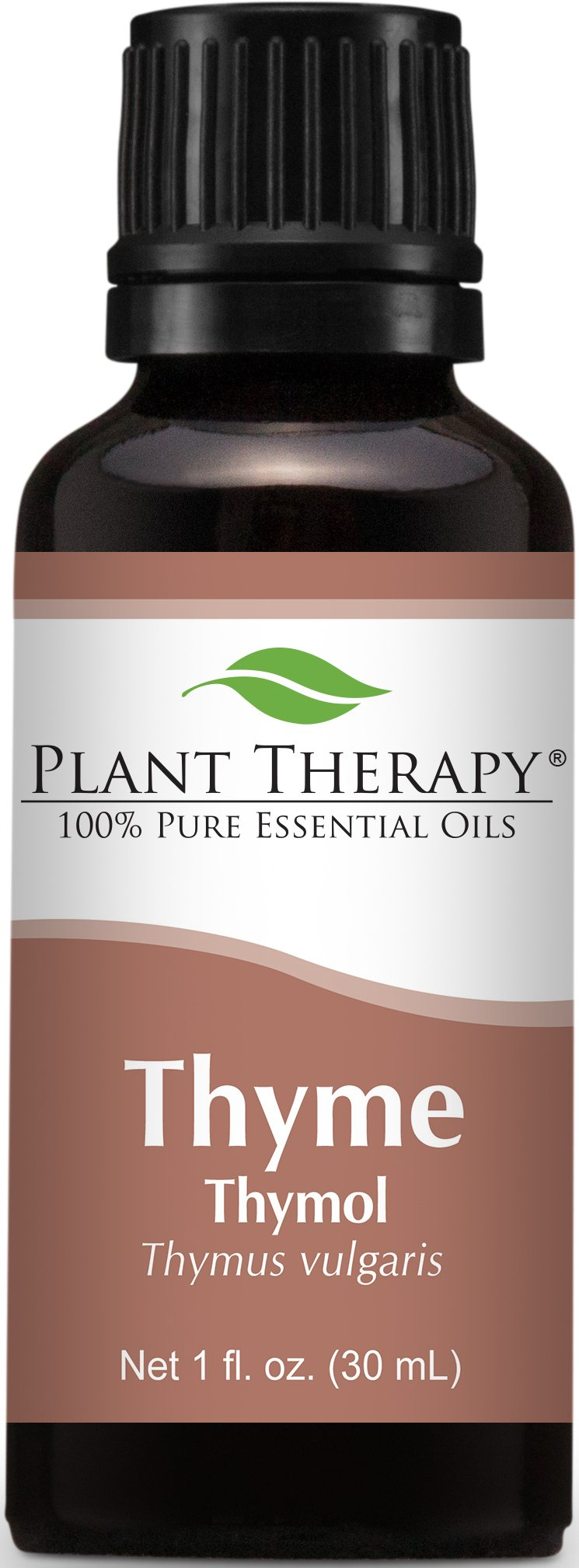 Plant Therapy Thyme Thymol Essential Oil. 100% Pure, Undiluted, Therapeutic Grade. 30 ml (1 oz).