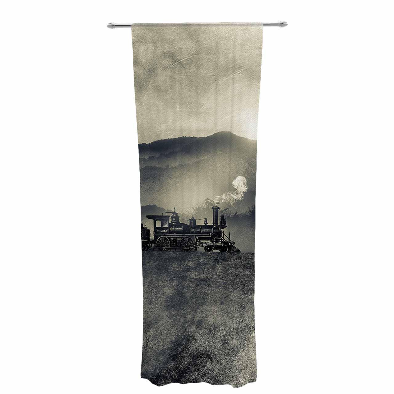 Kess InHouse Viviana Gonzalez Chapter II Sheer Curtains 30' x 84'