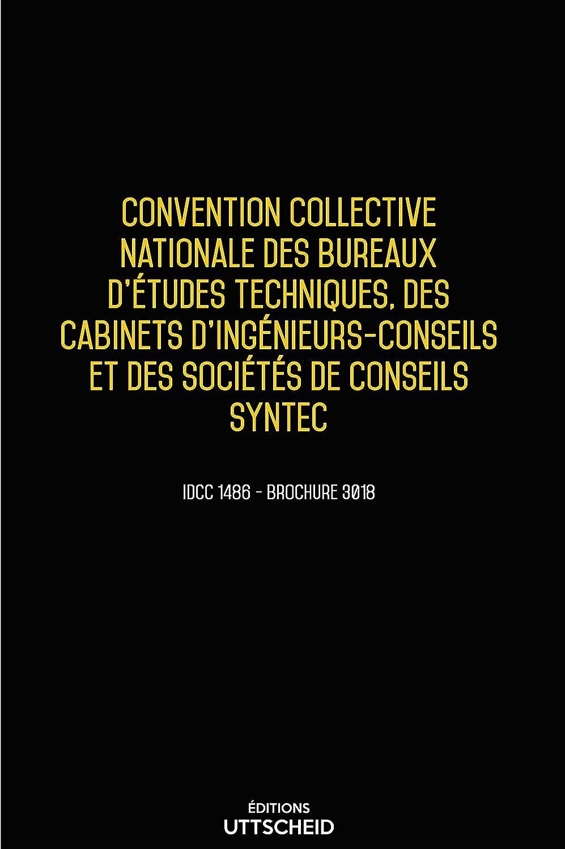 SYNTEC COLLECTIVE GRATUITEMENT TÉLÉCHARGER CONVENTION