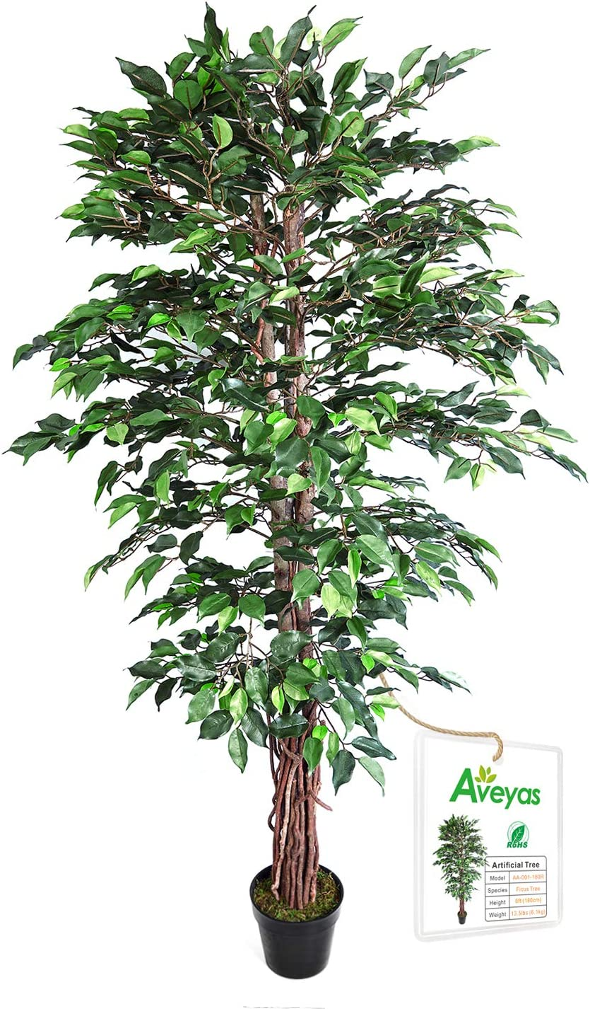 Aveyas 6ft Artificial Ficus Silk Tree (72in) with Plastic Nursery Pot, Fake Plant for Office House Farmhouse Living Room Home Decor (Indoor/Outdoor)