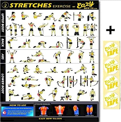 Amazon.com: Eazy How to Stretch Cartel Ejercicio Workout Big ...