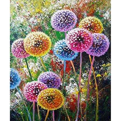 TianMaiGeLun Full Drill 5d Diamond Painting Kits Cross Stitch Craft Kit New DIY Kits for Kids Adults Paint by Number Kits (Dandelion, 25x30cm, Square Drill): Toys & Games