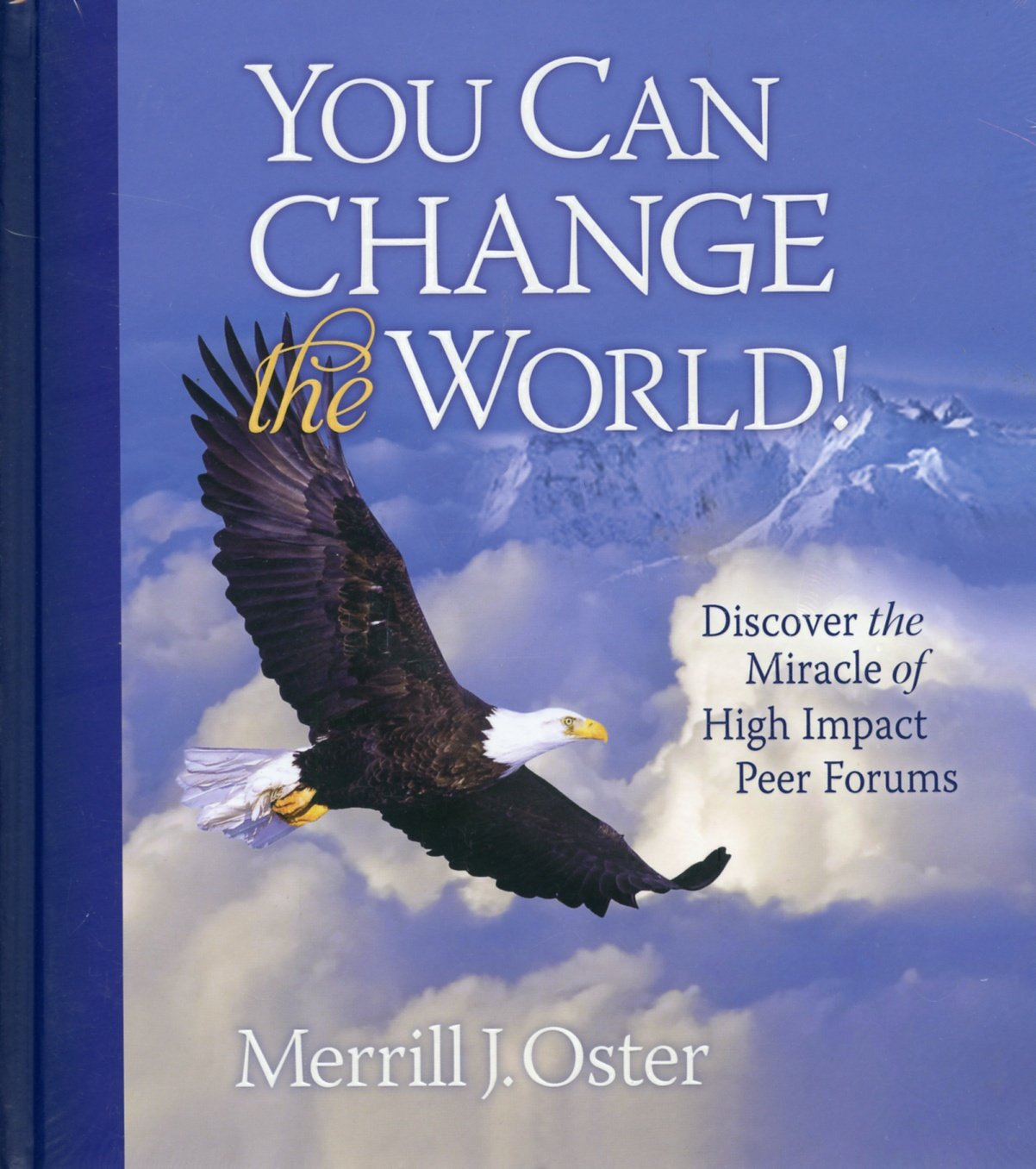 You Can Change the World! Discover the Miracle of High Impact Peer Forums PDF