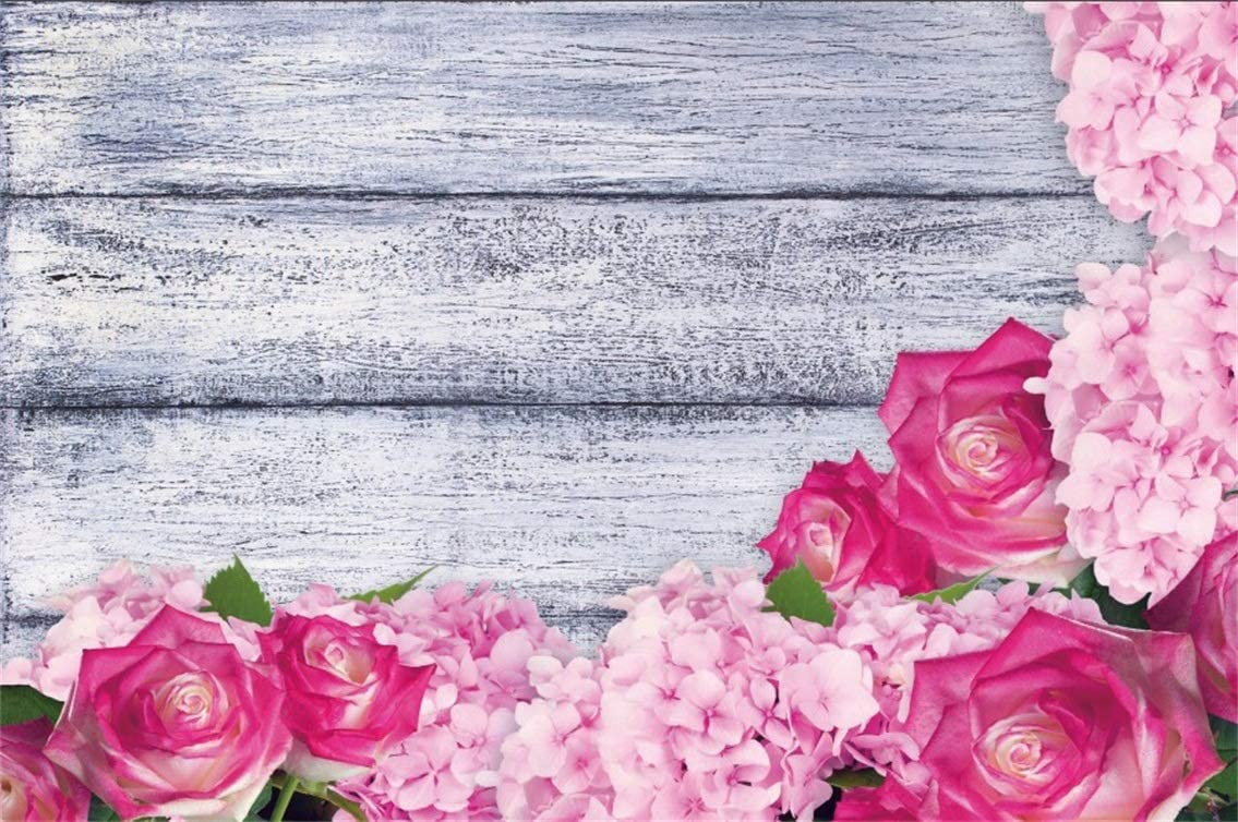 Amazon Com Csfoto 8x6ft Background Blooming Pink Flower Rose On
