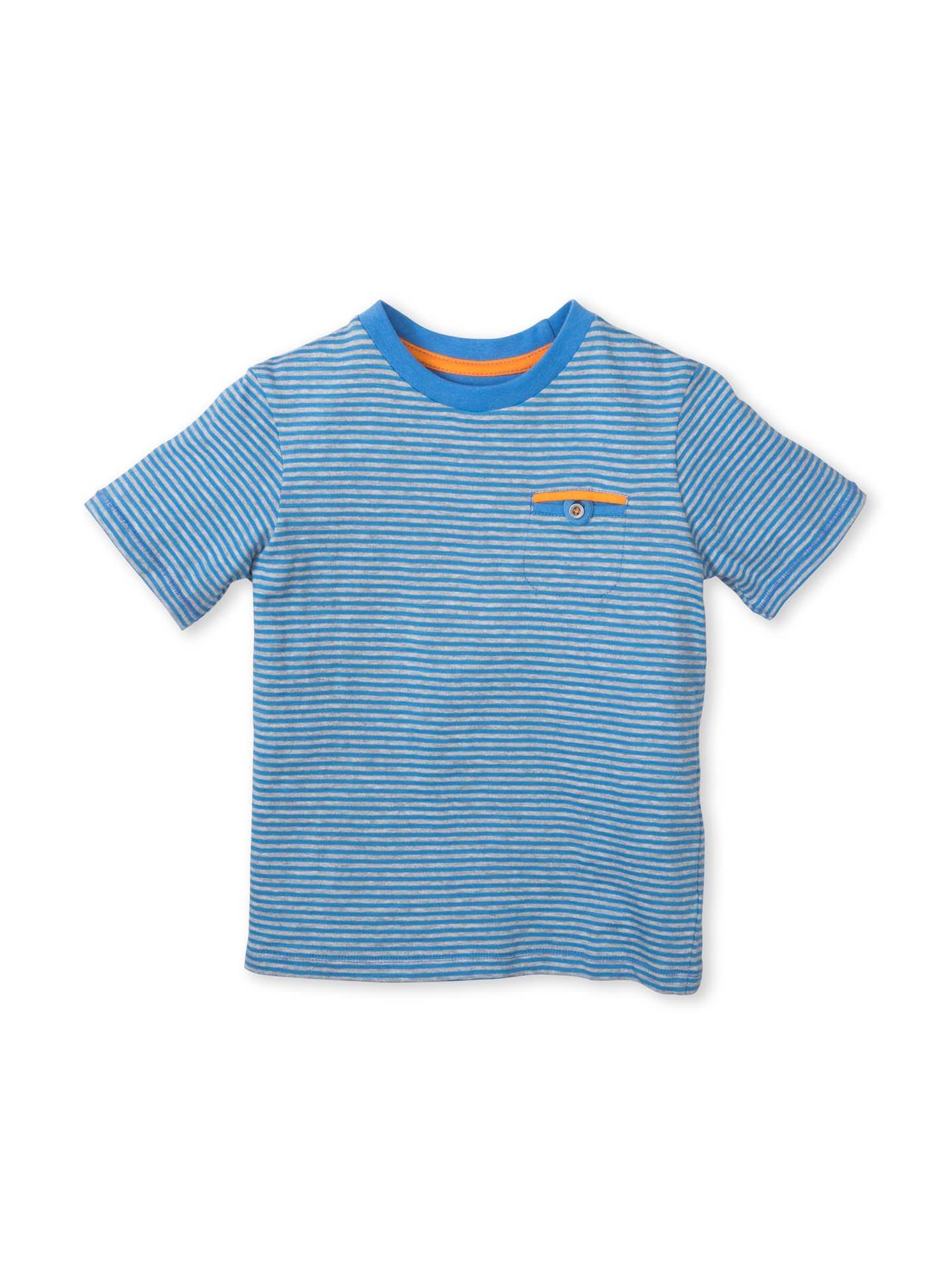 Colored Organics Boys Organic Crew Tee Shirt - Blue Stripe - 5T