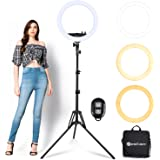 Ring Light with Tripod Stand Yesker 14 Inch Led Ringlight Kit with Phone Holder Adjustable Color Temperature Circle Lighting