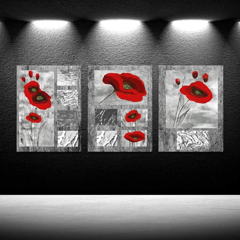 iKNOW FOTO 3 Piece Abstract Canvas Prints Red Poppies Flowers on Gray Modern Giclee Framed Canvas Prints Artwork Paintings On Canvas Wall Art for Home Decorations Wall Decor 12x16inchx3pcs