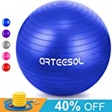 Arteesol Exercise Yoga Ball, Balance Ball with Quick Pump 65cm/75cm Anti-Slip Yoga Ball Heavy Duty Gym Ball for Physical Therapy, Gym and Home Exercise