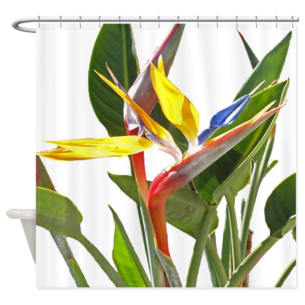 Amazon CafePress Bird Of Paradise Shower Curtain Decorative Fabric 69x70 Home Kitchen