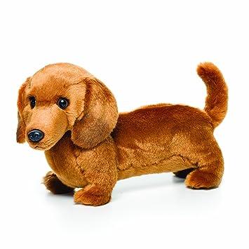 Amazon Com Nat And Jules Standing Large Dachshund Dog Children S